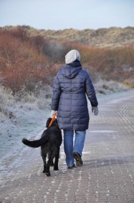 Spaziergang im Winter mit Hund